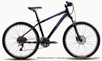 Sepeda Gunung Wanita Polygon Cleo 5.0 26 Inci