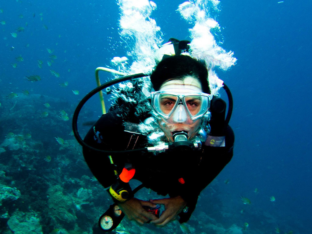 The New Rostra (rostra Novum) A New Blog: Scuba Diving