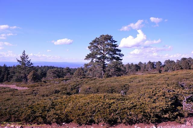 puebla-san-miguel-alto-barracas-paisaje