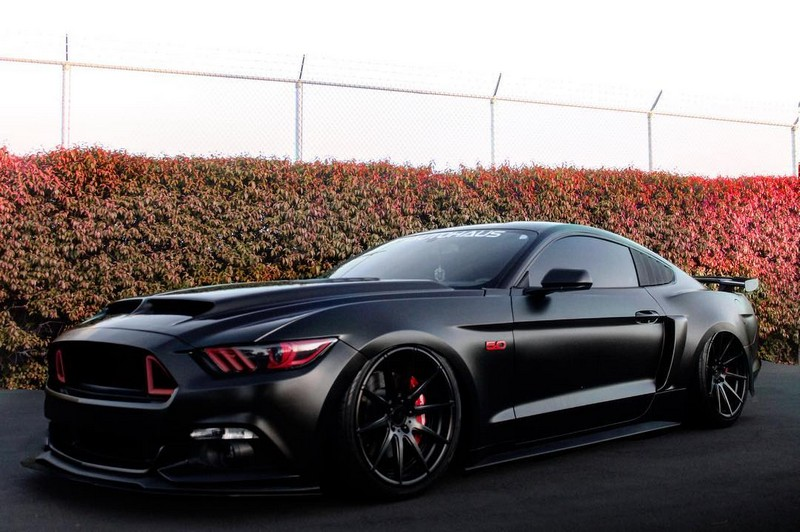 One mean Mustang 4