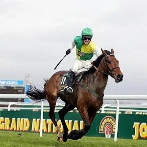 Grand National 2005