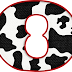 Abecedario Vaquero con Piel de Vaca. Cow Skin Alphabet.