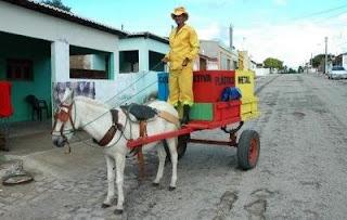 Resultado de imagem para FOTO DE RECICLAGEM EM CARNAUBAIS