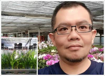 巨匠美語評價- 台灣蘭苗 拓展耕耘國際市場