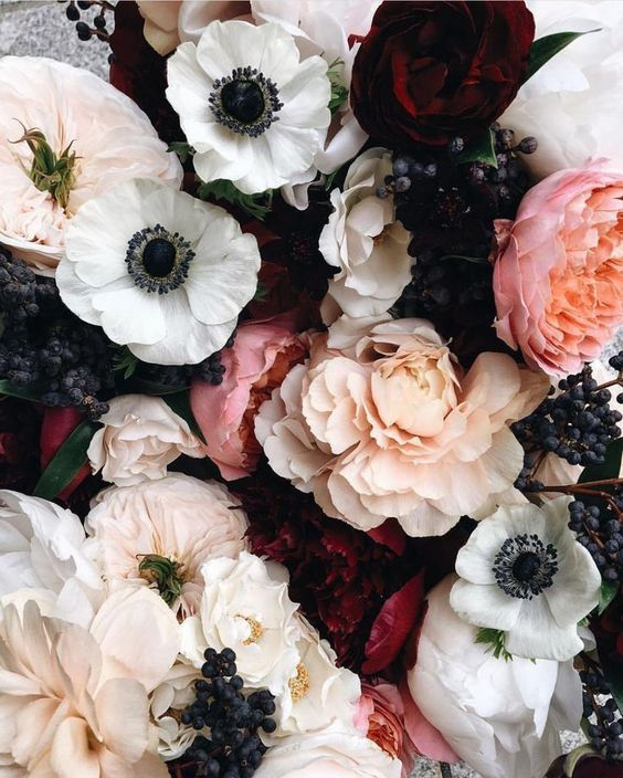 Flowers, Pink, White and Black