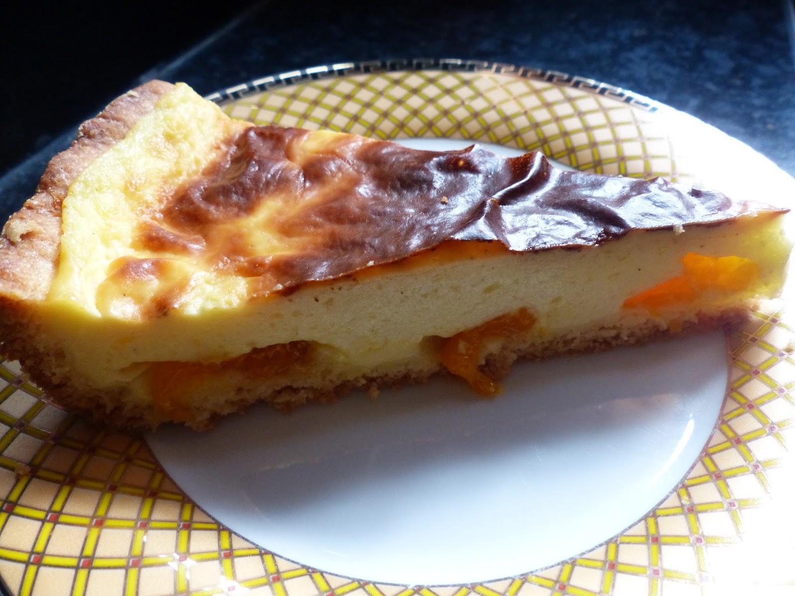 Verboten Gut Pudding Schmand Kuchen Mit Mandarinen