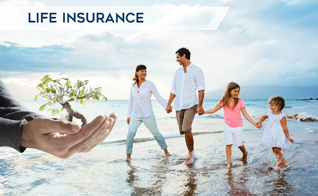 Life Insurance and Annuities - The Similarities and Differences.