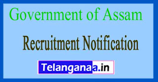 Directorate of Technical Education  Government of Assam Recruitment Notification 2017
