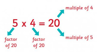 Factors and Multiples: Prime Numbers and Prime Factors, Index Forms and Common Factors, HCF and LCM