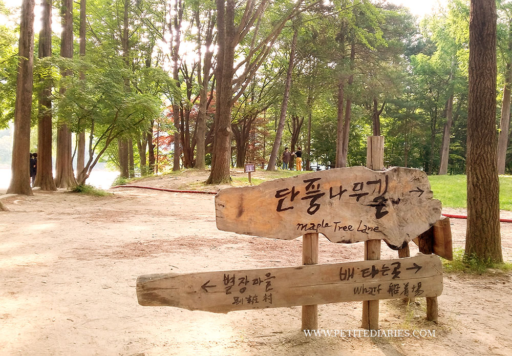 summer holiday nami island