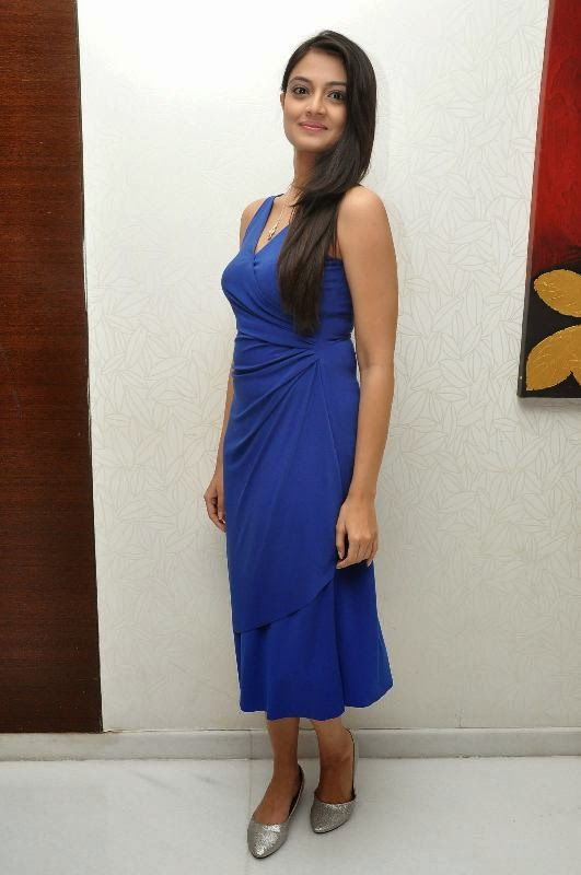 Beautiful Telugu Girl Nikitha Narayan Long Hair Pics In Blue Dress