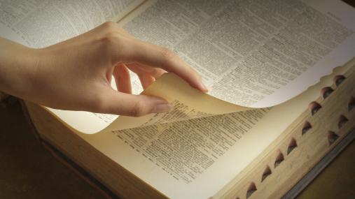 diccionario de cocina internacional
