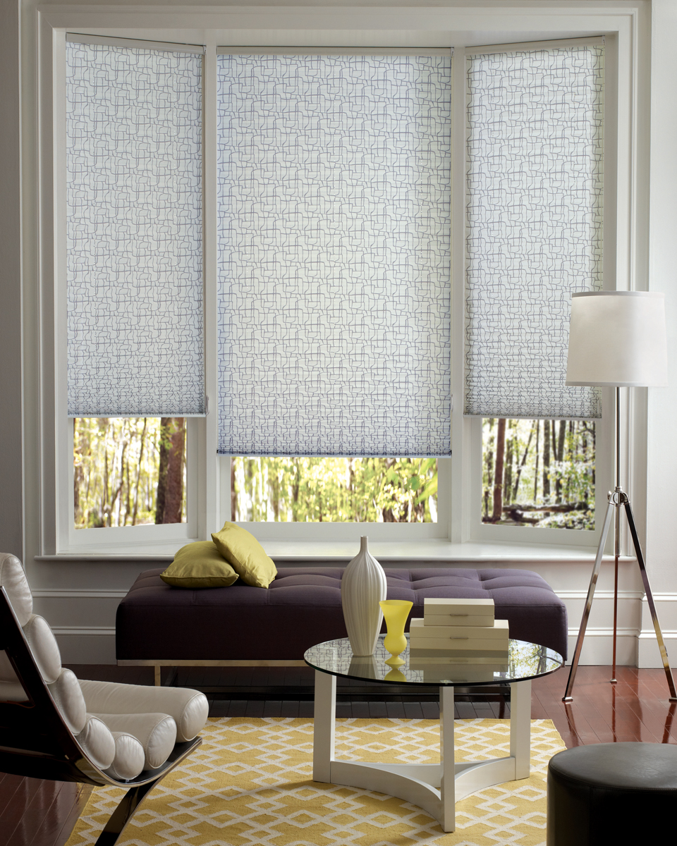 Factory Paint Amp Decorating New Contemporary Pleated Shades