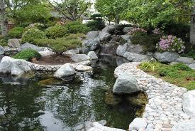 Il giardino delle naiadi a a a affittasi laghetto per for Laghetto artificiale per carpe koi