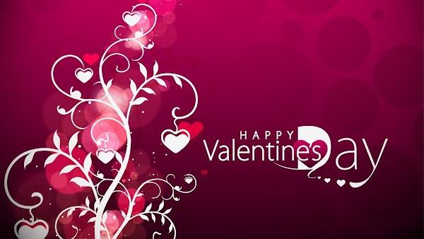 Best Valentine Day Shayari in Hindi For Girlfriend & Boyfriend 2019