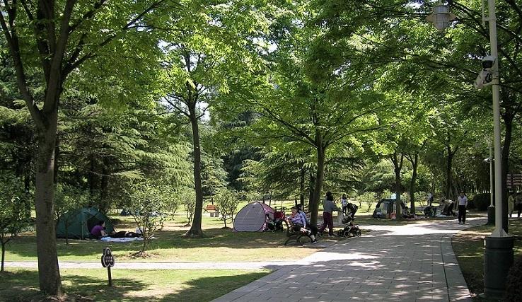 公園の至る所に張られた小さなテント