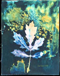 Wet cyanotype_Sue Reno_Image 382