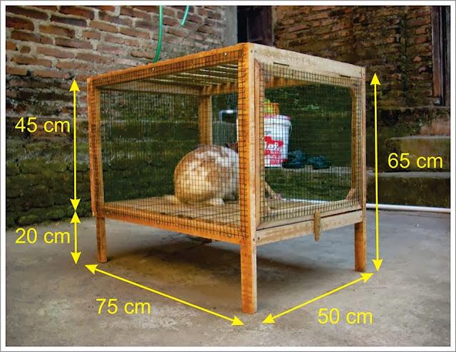 gambar kandang kelinci sederhana