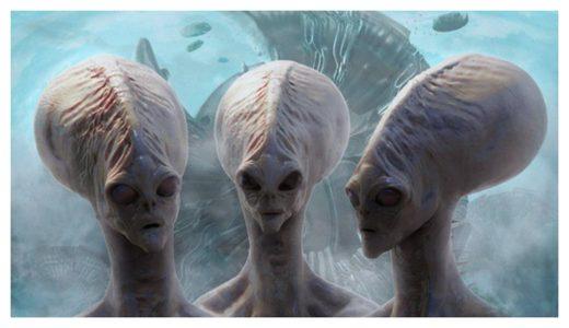 "profinewsplanet: «Είμαστε ιδιοκτησία» - ""Ζωολογική Θεωρία"" Γιατί ..."