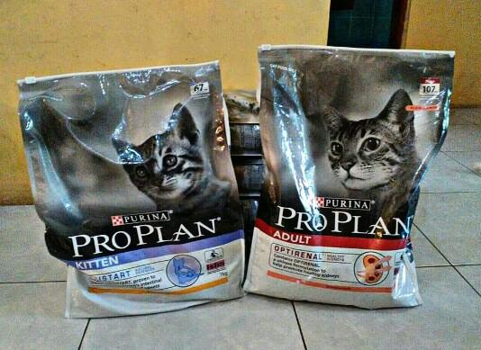 5 Brand Makanan Kucing Super Premium Dan Harganya 2019 Harga Diri