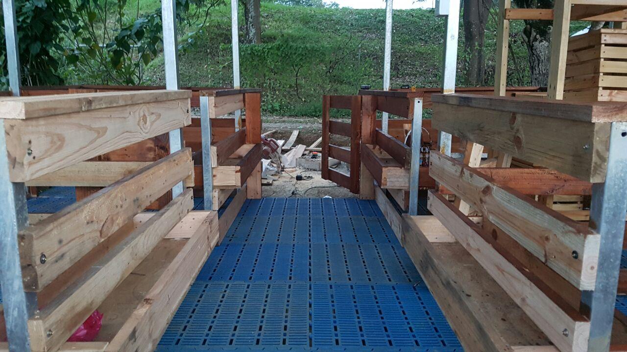 Mih goat farm lantai kambing moden for Garden shed johor