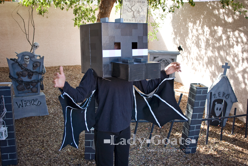 Lady Goats: How to Make an Enderdragon Costume