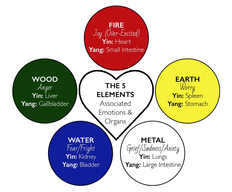 Exclusive: TCM: The Five Elements - 476.2KB