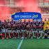 Flamengo é campeão do carioca, confira os campeões estaduais 2019