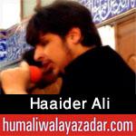 http://www.humaliwalayazadar.com/2015/10/haider-ali-nohay-2016.html