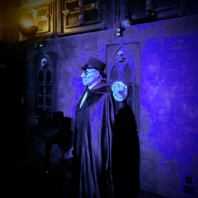 Castle Dracula Experience in Dublin - Vampire