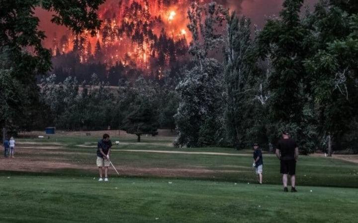 Fotos esquisitas mostrando que o mundo agora é da zoeira