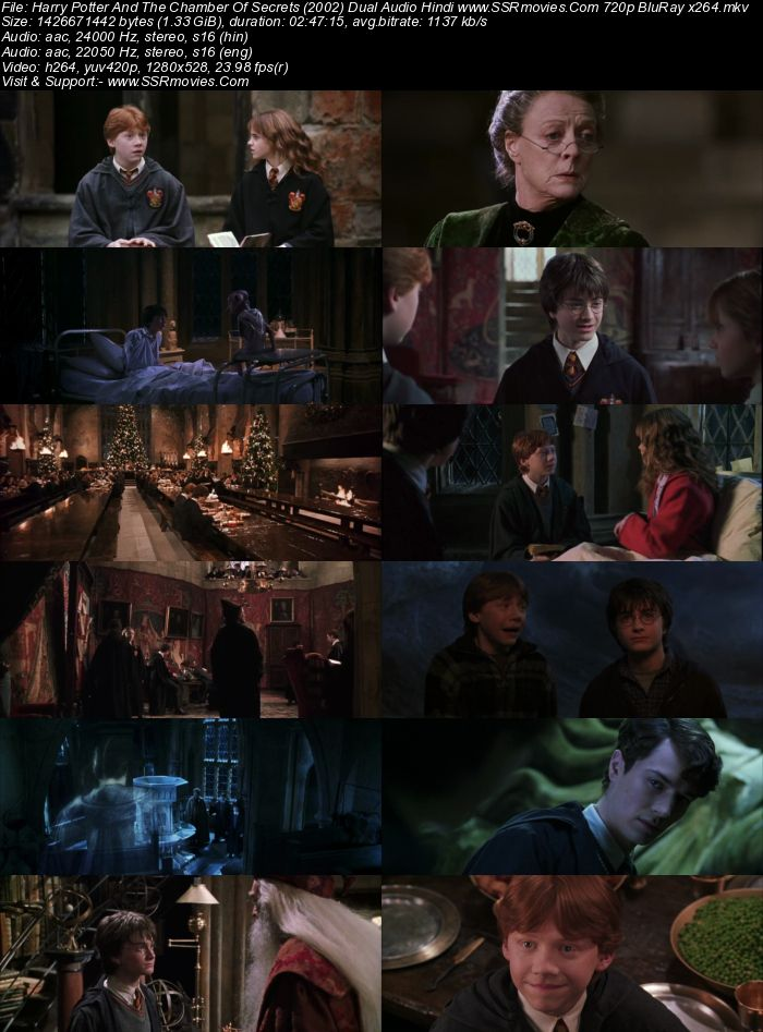 Harry Potter And The Chamber Of Secrets (2002) Dual Audio 720p BluRay x264 Movie Download
