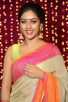 Anu Emmanuel sizzles in khaki saree at Zee Telugu Apsara Awards 2017 04.JPG