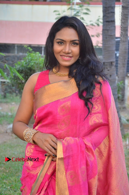 Actress Risha Pos in Pink Silk Saree at Saravanan Irukka Bayamaen Tamil Movie Press Meet  0007.jpg