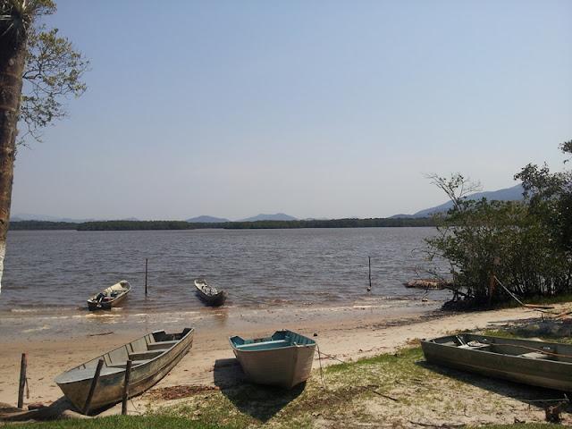 Estudos realizados para a elaboração do Plano de Manejo da APA Ilha Comprida reforçam a importância da região para proteção da biodiversidade da Mata Atlântica no estado de São Paulo