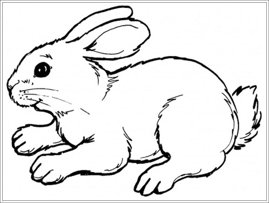 Berühmt Malvorlagen Von Kaninchen Fotos - Malvorlagen Von Tieren ...