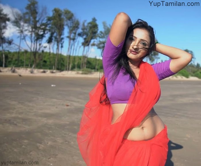 Desi Actress and Models Hot Navel Photos|Sexy Belly Pictures in Saree