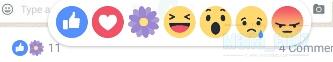 Icon Bunga Sakura Di Facebook Sempena Hari Ibu!