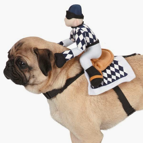 Dog City Dime Store: Horsing around with dog Halloween ...