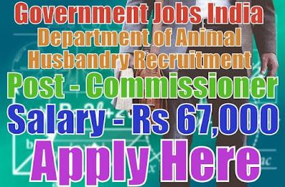 Animal husbandry department recruitment 2017