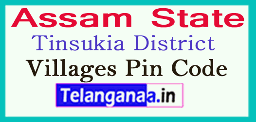 Tinsukia Pin Codes in Assam State