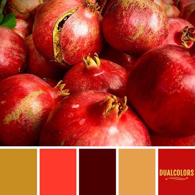 color_paleta_133