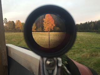 Rifle Scope Reticle