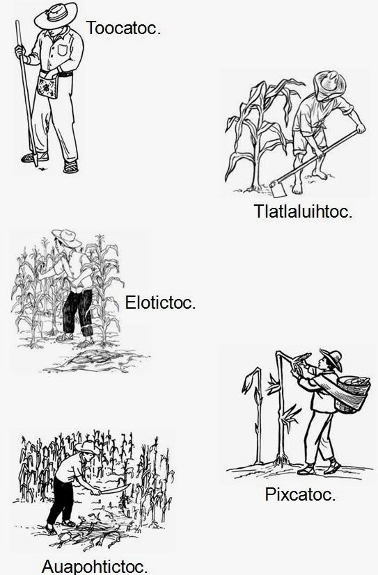 forito: Diccionario ilustrado de Nahuatl