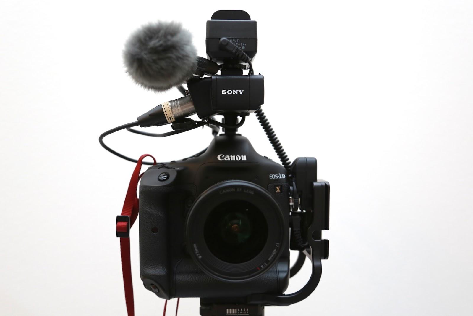 canon 5d ファームウェア