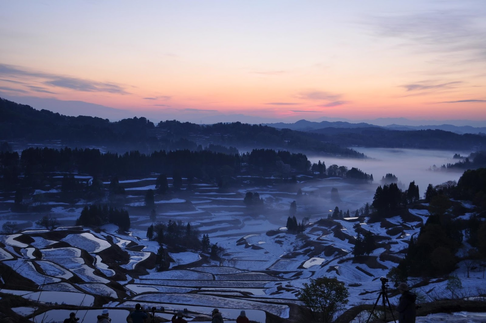 新潟縣 星峠梯田 日本之鄉100選 夢幻田野風景 形成美絕夢幻的四季獨有美景