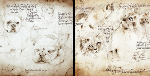 00-Leonardo-s-Dogs-Cats-and-Dogs-Drawn-in-the-style-of-Leonardo-da-Vinci