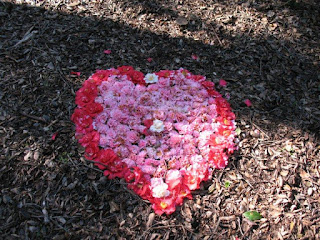 camellia heart