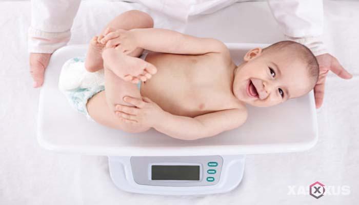 Fakta 9 - Janin 36 minggu akan mengalami kenaikan berat dan tinggi badan