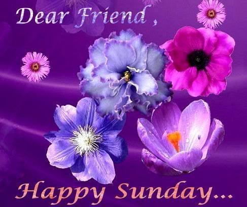 Happy Sunday Friend Card, Gretting, Sms, Twitter & Facebook Status ~ Hindi Sms, Good Morning SMS ...